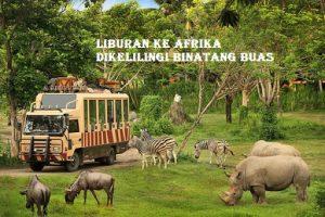 Liburan Ke Afrika Dikelilingi Binatang Buas